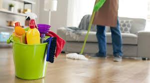 Agora Frog's Take on House Cleaning Salt Lake City